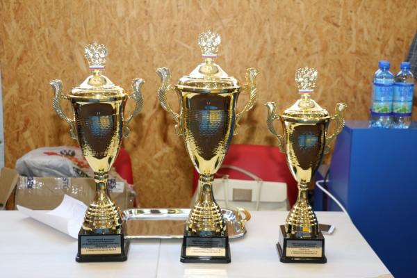 17-й чемпионат России и этап Кубка Вооруженных сил РФ по армейскому рукопашному бою